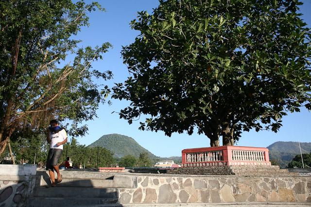 Pohon sukun tempat Bung Karno merenungi nilai-nilai luhur pancasila