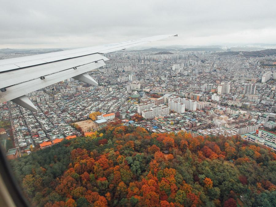 korea musim gugur auntumn